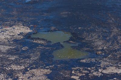 Natural oil pool
